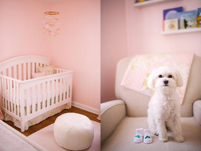 Pink-and-green-nursery-minneapolis-newborn-photos-by-Gina-Zeidler-Photography-0004